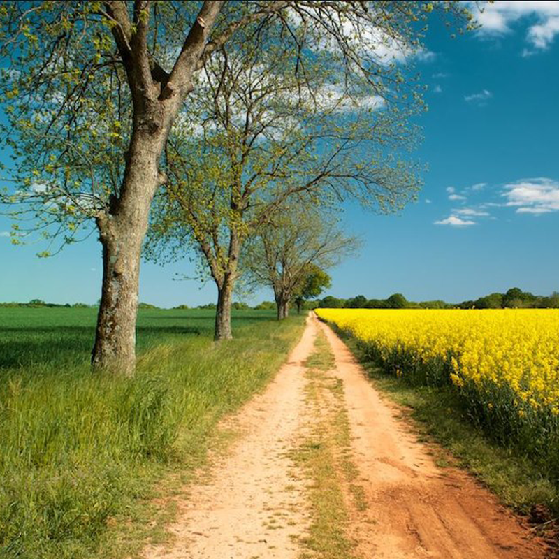 FARMeander Farm Trail